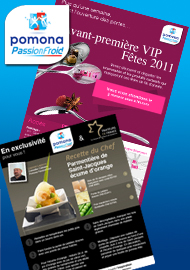 Groupe Pomona - Newsletters et emailings - Agence Interactive Paris